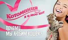 Котомания: я и мой кот